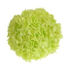 10 inches Hydrangeas Ball (AF-038)