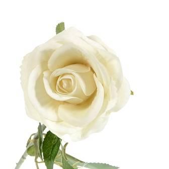 Rose Stick (AF-052)
