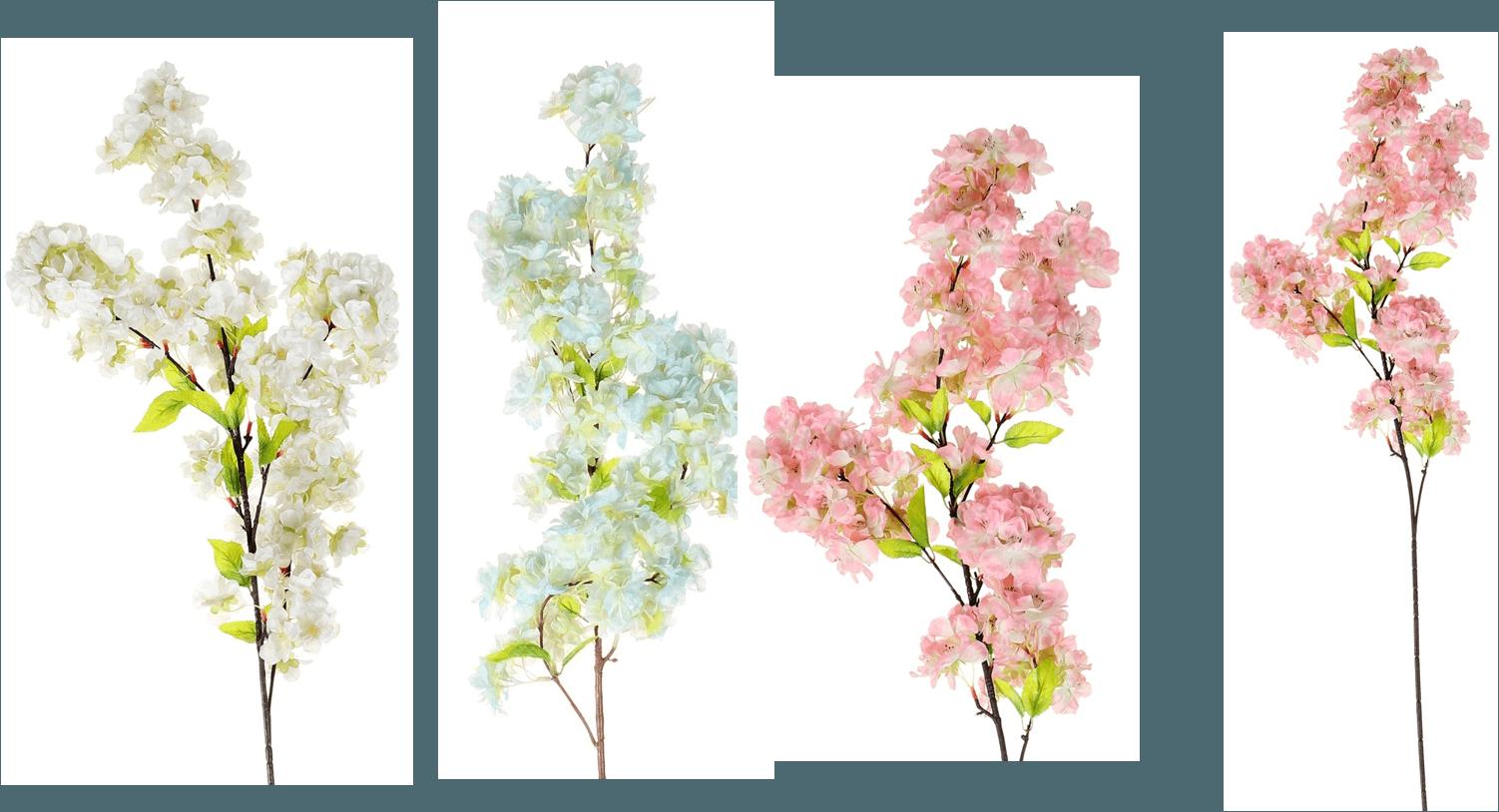 Cherry Blossom (AF-050)